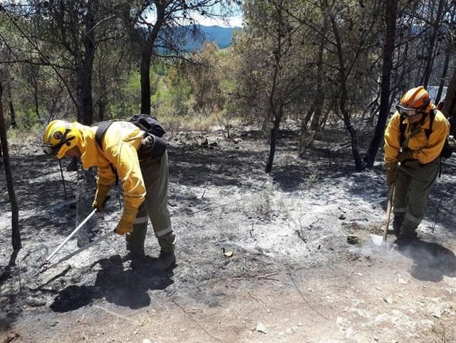 Los incendios forestales en la Comunitat Valenciana bajan en número y superficie hasta los 289 fuegos y 1.400 hectáreas