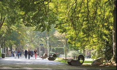 Vitoria-gasteiz: hacia una ciudad más habitable a través de un nuevo paradigma de movilidad sostenible