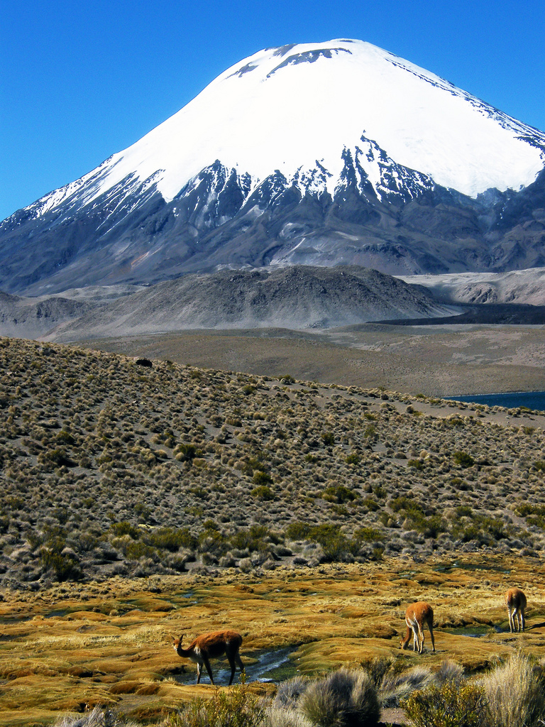 Volcanes, cómo afectan al planeta