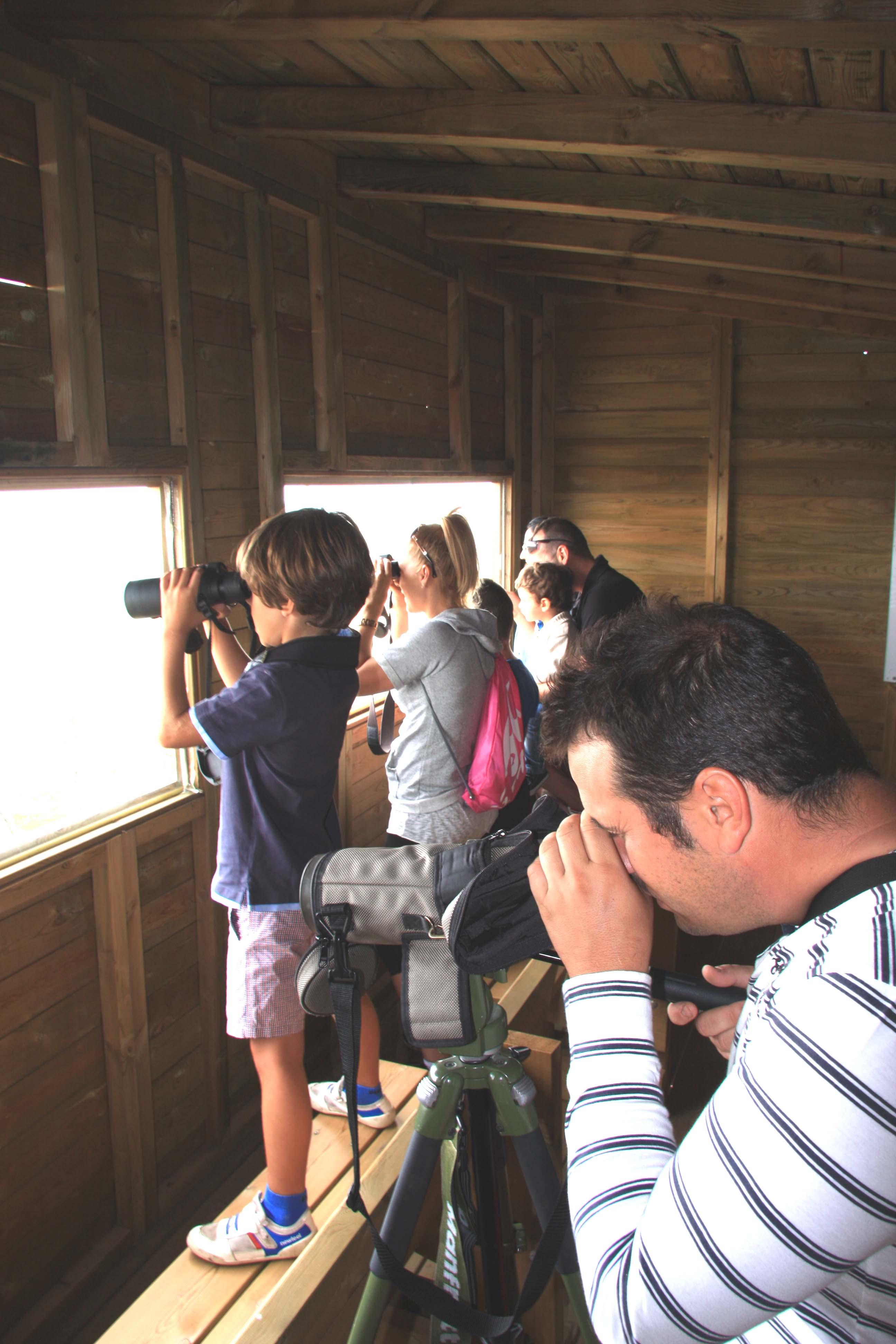 El Colectivo Azálvaro celebra el Día Internacional de los buitres