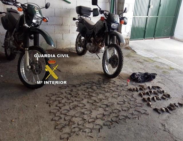 Dos investigados en Mancha Real y Torredelcampo acusados de cazar aves insectívoras con artes prohibidas