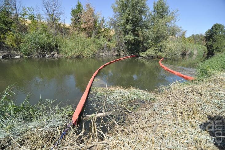 Se confirma que no hay contaminación química en el Henares