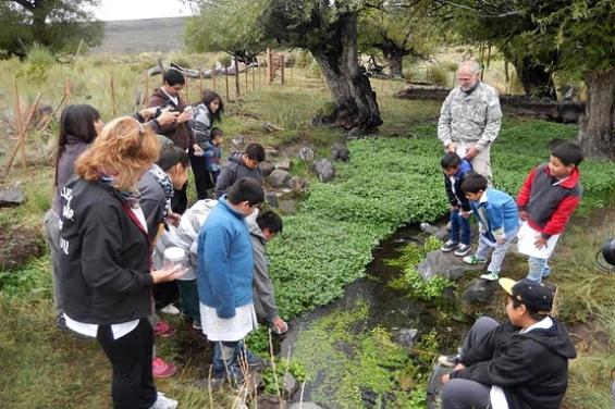 Argentina. Reintroducen ranas en su hábitat natural en La Plata