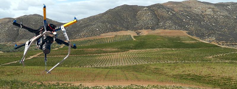 Drones sobrevuelan el campo mexicano