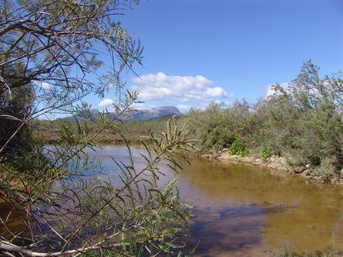 Latinoamérica: Dime como están tus ríos  y te diré quién eres