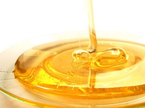 La justicia europea dice que la miel contaminada con transgénicos requiere autorización para venderse