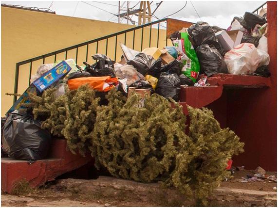 A por unas Navidades más verdes
