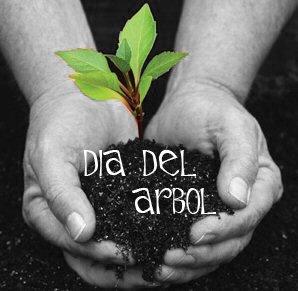 D a internacional del rbol for Dia del arbol 01 de septiembre