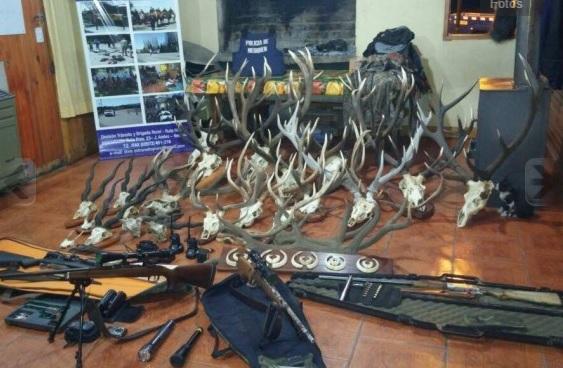 Argentina. Golpe a la caza furtiva en Junín de los Andes