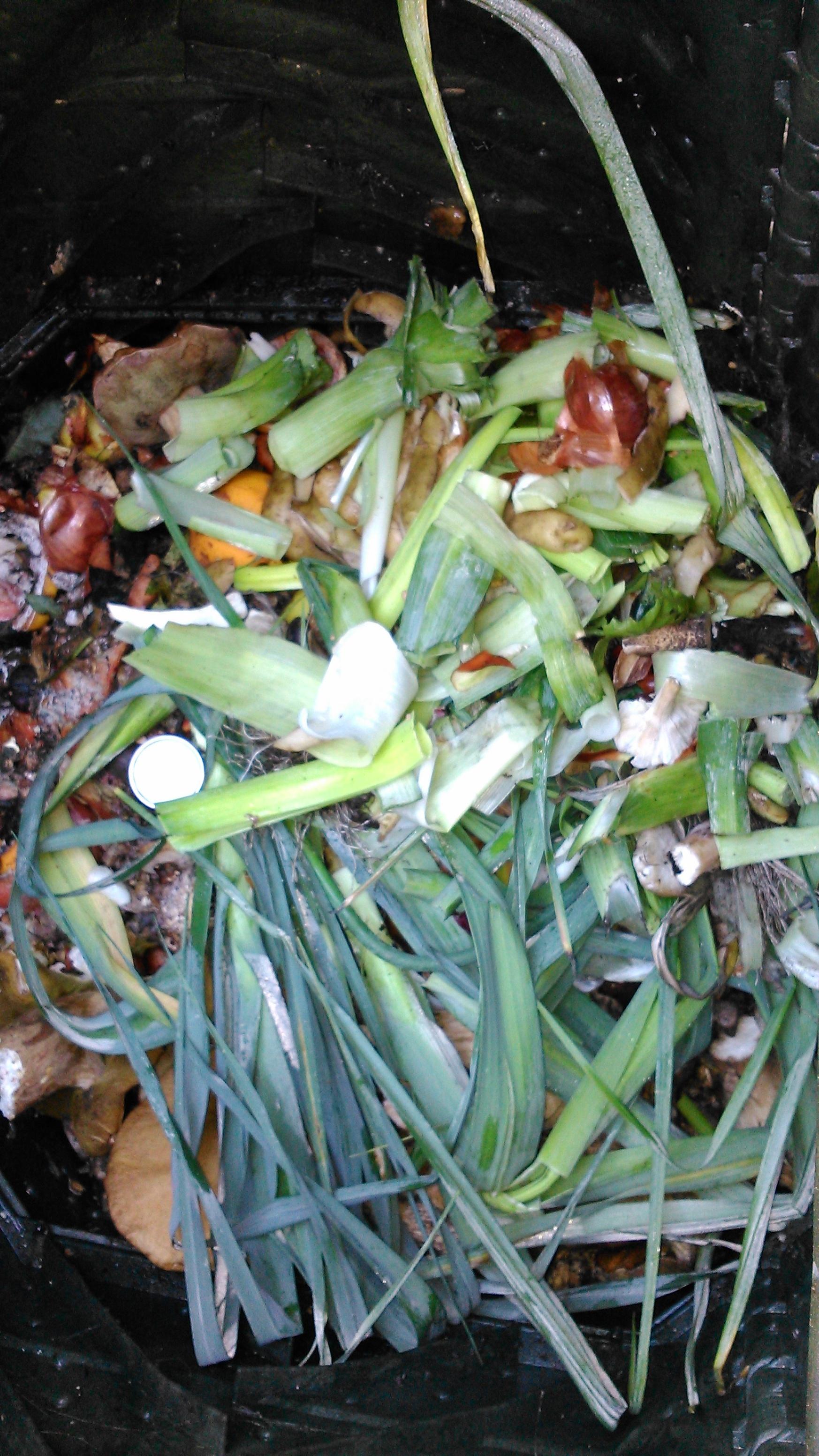 Buen ritmo del programa de compostaje doméstico de Sogama (Galicia)