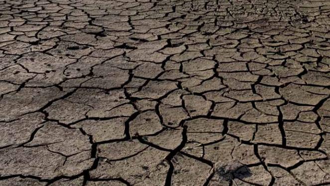 Greenpeace exige cerrar los pozos ilegales, el fin de obras hidráulicas y mejorar la gestión ante la sequía