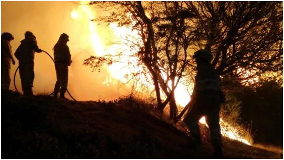 Incendios forestales en invierno: previsión cero + codicia desmedida