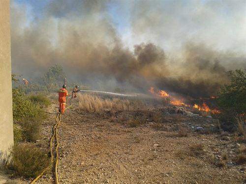 Premios Nobel reunidos en Valencia exigen la prevención de los incendios forestales