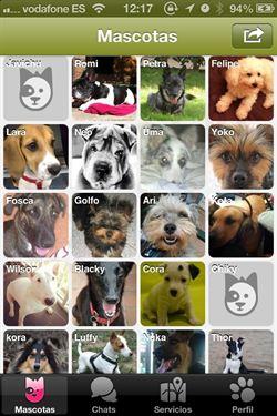 Doggy Talky, una red social para amantes de los perros