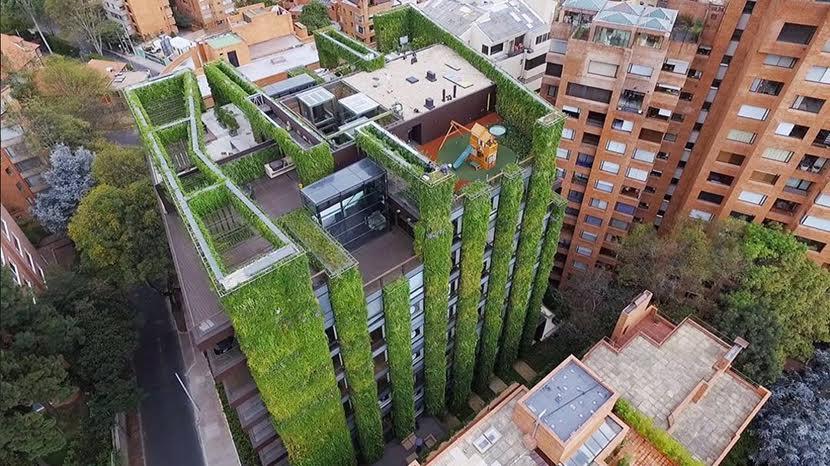 Un estudio de la Hispalense aboga por cubrir de vegetación techos de edificios como forma de paliar el cambio climático
