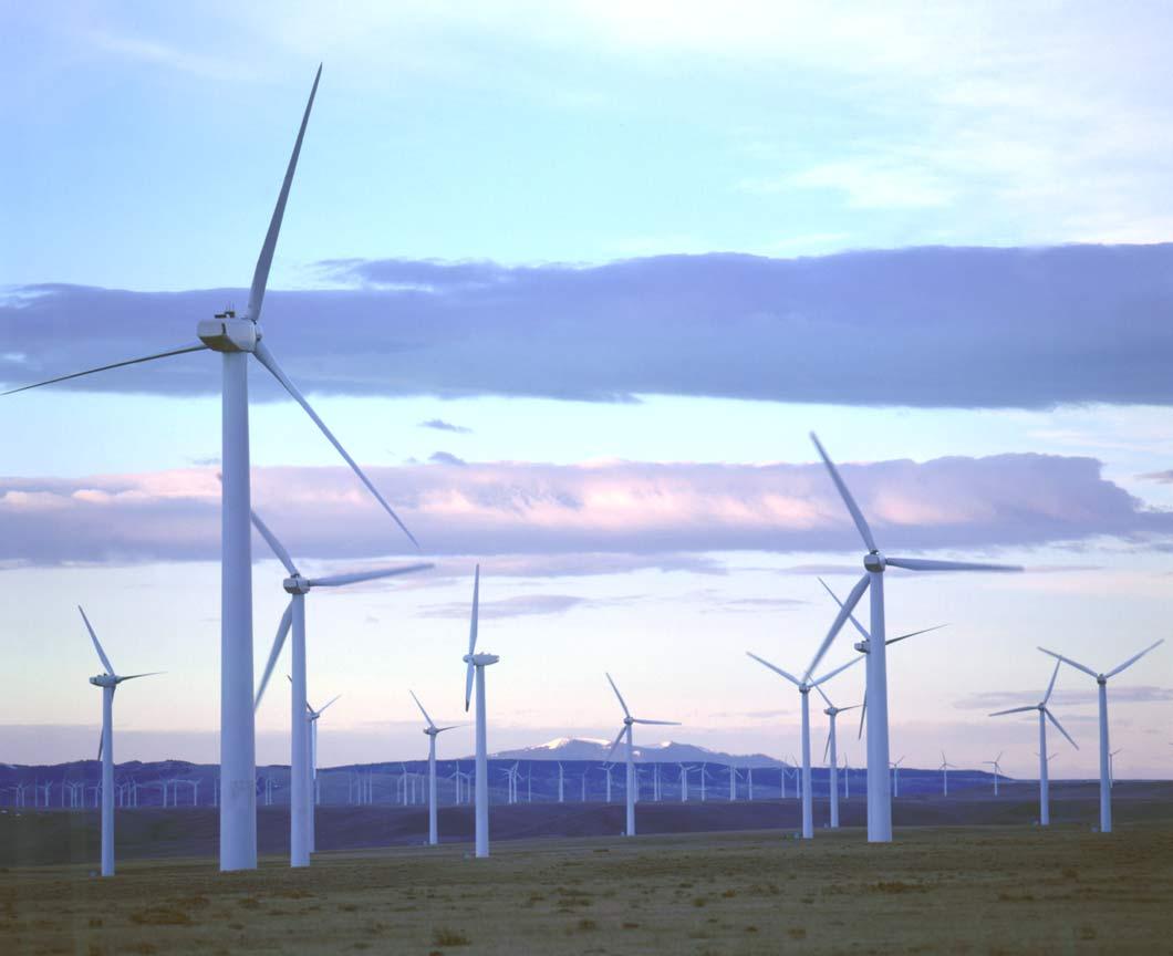 El Gobierno canario agiliza la instalación de proyectos complementarios a los parques eólicos para su impulso