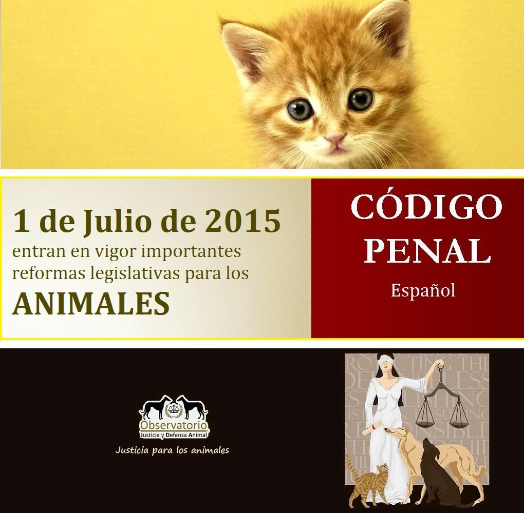 Notables mejoras en materia de maltrato animal del nuevo Código Penal