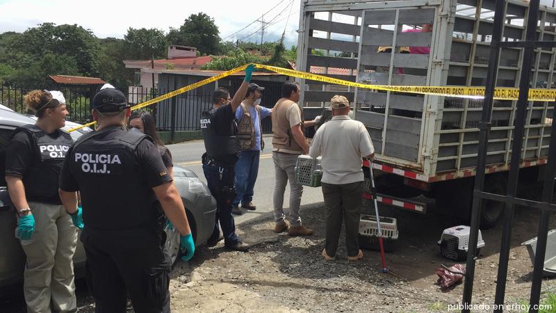 Rescataron casi 70 animales de una sola casa en Montes de Oca
