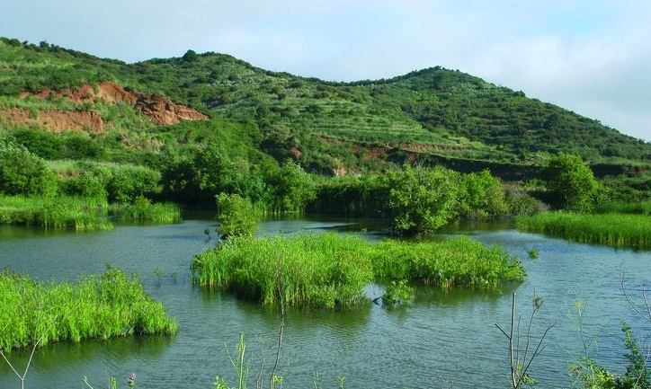 Funcionamiento de lagos y humedales españoles