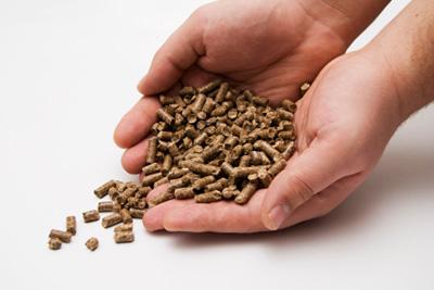 Sistema para hornos de panaderías con 'biomasa' que ahorra hasta un 80% de energía