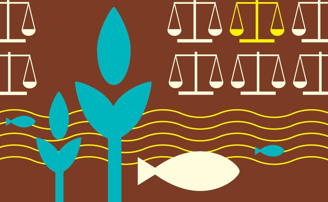 Avances Latinoamericanos en Regulación Ambiental