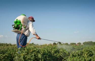 El Govern edita 2.000 ejemplares de una guía de referencia para el uso profesional de productos fitosanitarios