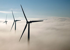 Identifican 58 empresas con potencial para realizar actividades de energía eólica marina