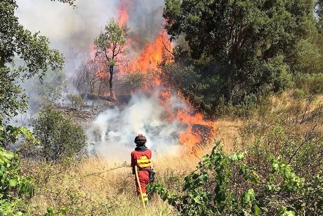 España ha enviado hasta 651 militares a Portugal para luchar contra los incendios de este verano