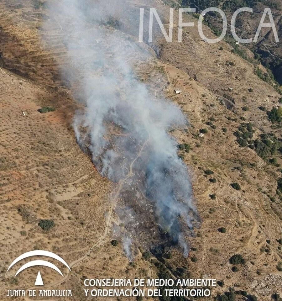 Estabilizado el incendio forestal del barranco de los Morciguillos en Válor (Granada)