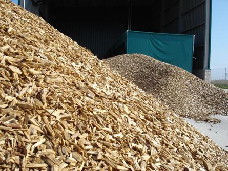 Cataluña aprueba la Estrategia para promover el aprovechamiento energético de la biomasa forestal y agrícola
