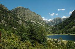 Cataluña inicia los trabajos de restauración de la zona afectada por los incendios forestales en el Parque Natural del Alto Pirineo
