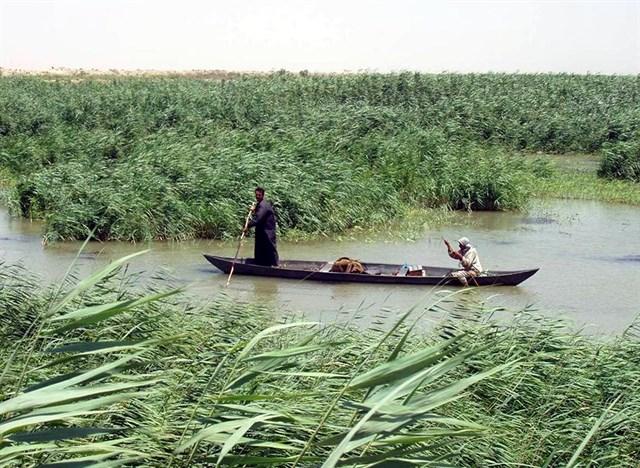 Humedales del sur de Irak, en la lista de Patrimonio Mundial