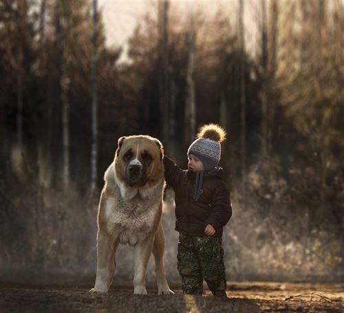 Juguetes Animales Que Niños Son Los Creen n0Nm8vw