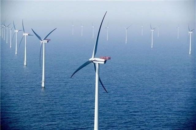 Las energías renovables a 'merced' de la falta de criterio del Gobierno