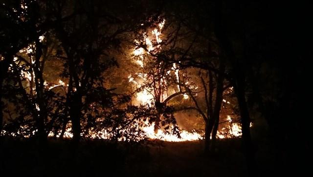 El fuego arrasó solo en octubre casi 70.000 hectáreas, el 40% del total quemado en lo que va de 2017