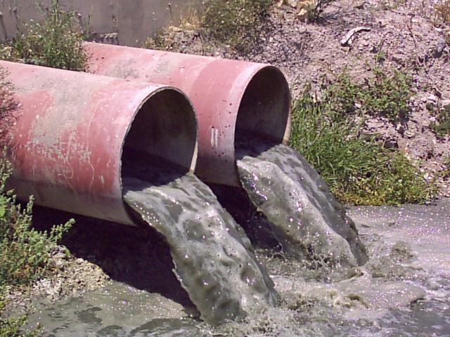 Aguas limpias en el sector papelero