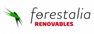 Forestalia se alía con GE para el desarrollo de los 1.500 MW conseguidos en las subastas