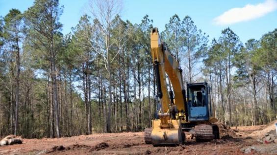 Argentina: Están talando un bosque nativo en Córdoba para construir un canal