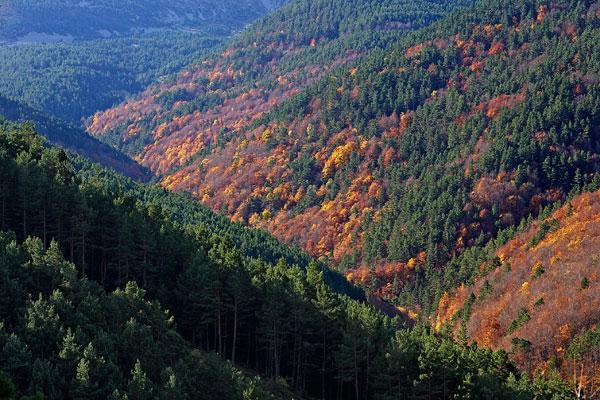 El Parque Natural Sierra Cebollera oferta 268 propuestas entre marzo y diciembre