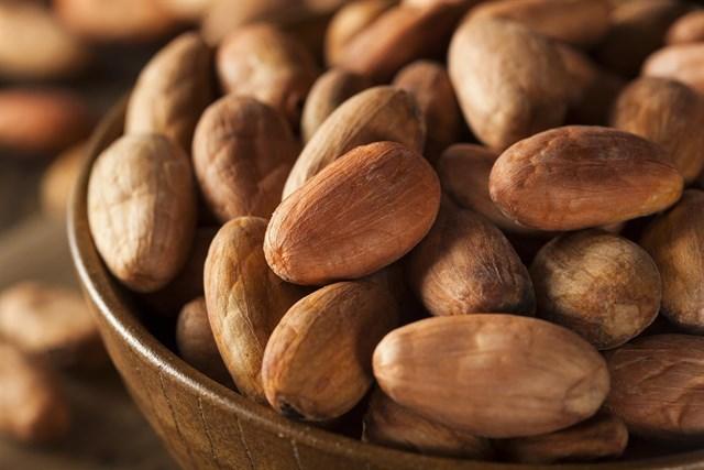 Desayunar con cacao mejora el rendimiento escolar