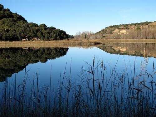 Hay demasiados humedales amenazados en España