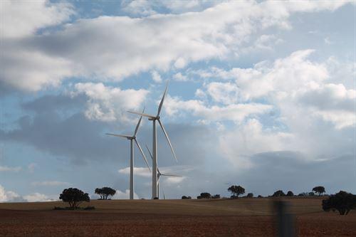 La CNMC certificará a las energías renovables el derecho al cobro de primas