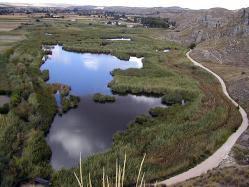 Comunidad de Madrid, 'arrasado' el humedal protegido de San Galindo