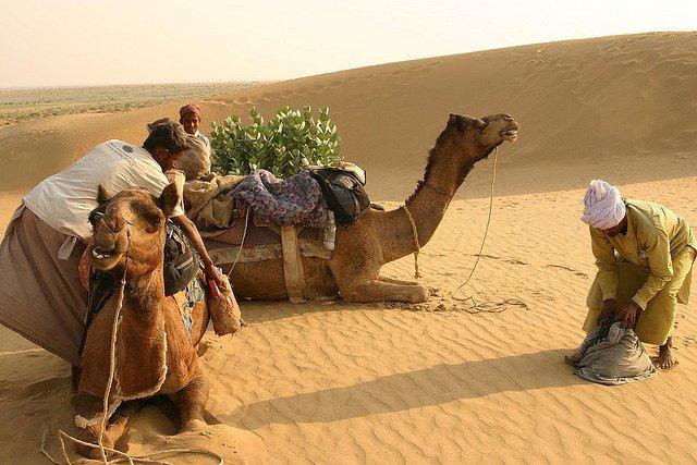 India, el 25% ya es desierto