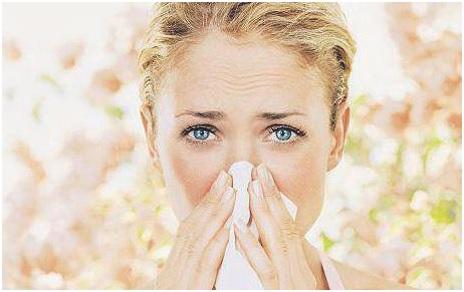 ¿Qué alimentos evitar durante la alergia estacional?