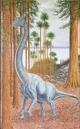 Soriatitan, un nuevo gran dinosaurio saurópodo español