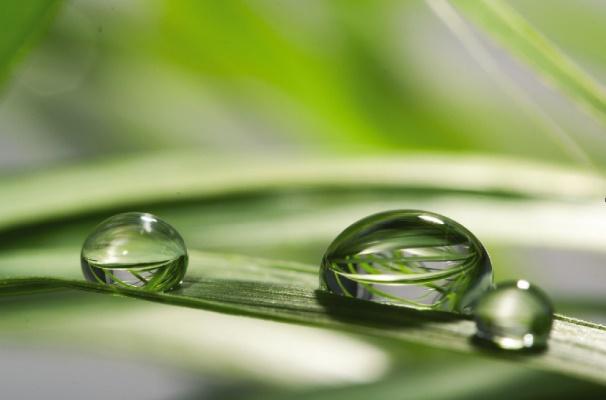 Los objetivos basados en la ciencia y la aplicación de Tecnologías Verdes son prioritarios