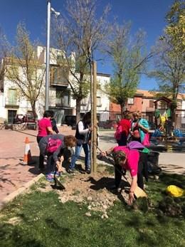Peal de Becerro (Jaén) concluye su campaña de plantación de árboles para embellecer y acabar con la grafiosis del olmo