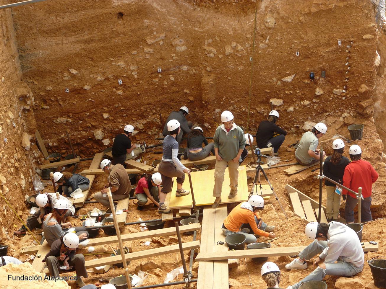 Los homínidos de hace 800.000 años planificaban la adquisición, transporte y preparación de piezas de caza