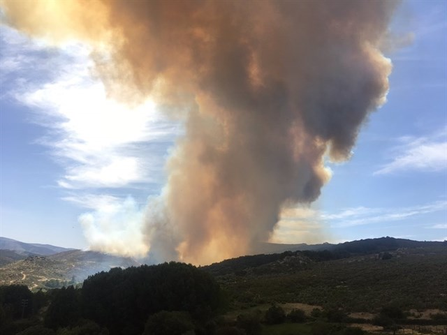 Medio Ambiente envía medios aéreos y terrestres a Navarredonda de Gredos (Ávila) para combatir el incendio